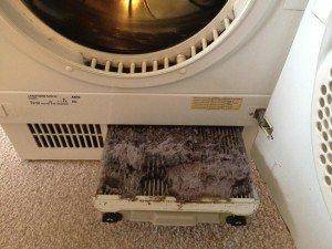 asciugatrice perde acqua